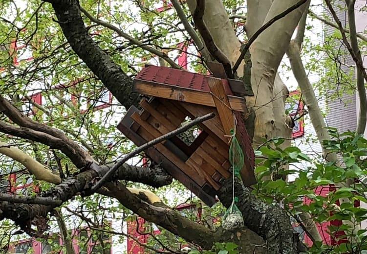 Vogelhäuschen in einem Baum