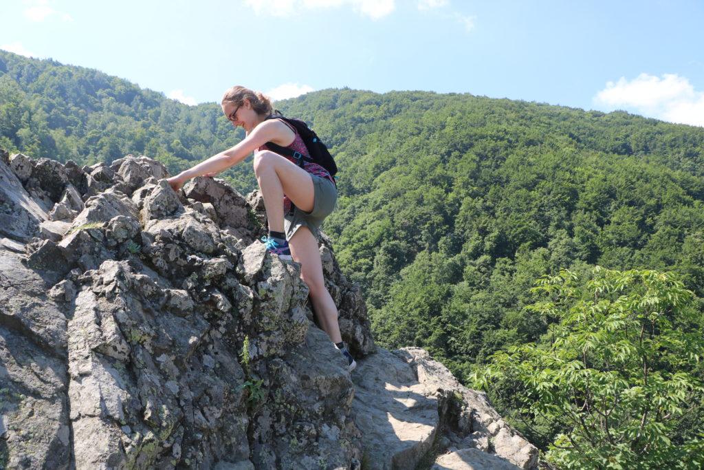Mutsammlerin beim Wandern im Vitosha-Gebirge