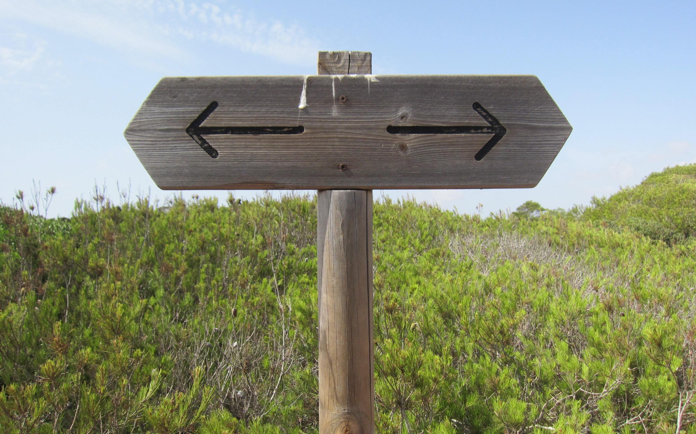 Wegweiser mit Pfeilen nach links und nach rechts, im Hintergrund Büsche
